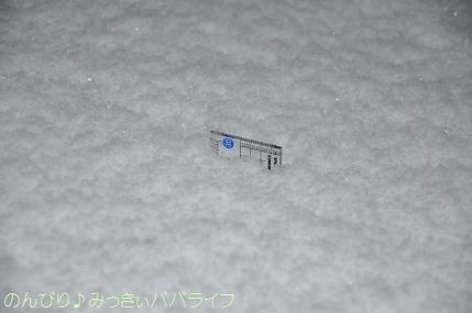 snow2014020803.jpg