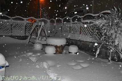 snow2014020804.jpg