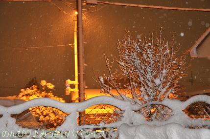 snow2014020806.jpg
