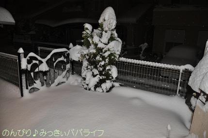 snow2014020807.jpg