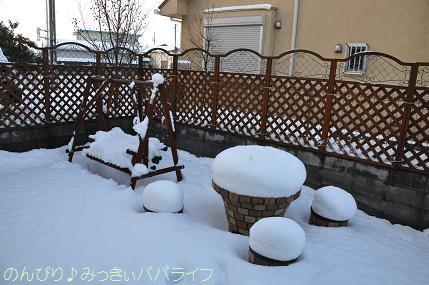 snow2014020809.jpg