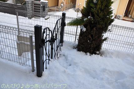 snow2014020811.jpg
