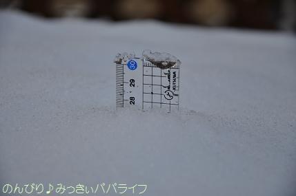 snow2014020812.jpg