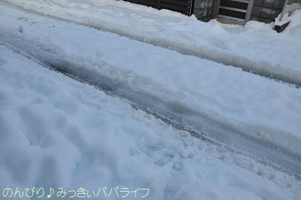 snow2014020813.jpg