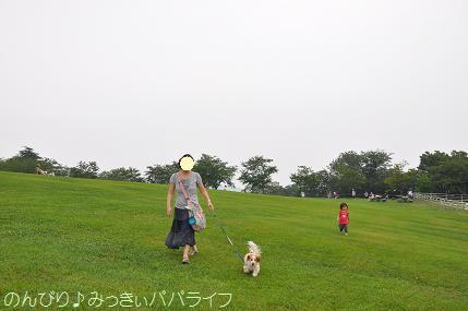tateyama2013070100.jpg