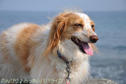 tateyama201307041.jpg