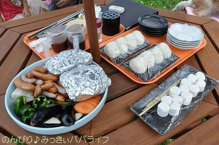 tateyama201307049.jpg