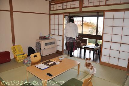 tateyama201402005.jpg