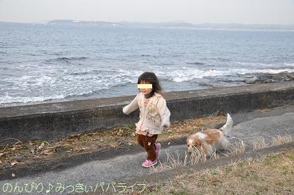 tateyama201402006.jpg