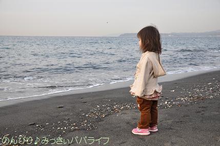 tateyama201402009.jpg