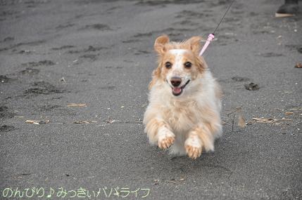 tateyama201402010.jpg
