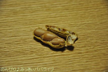 tateyama201402012.jpg