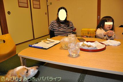 tateyama201402013.jpg