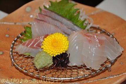 tateyama201402019.jpg