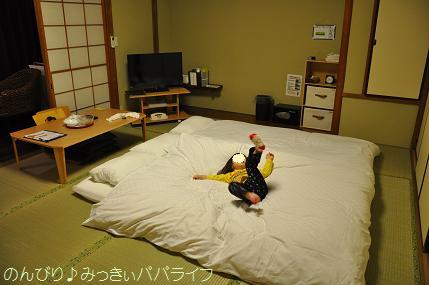 tateyama201402029.jpg