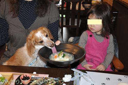 tateyama201402038.jpg