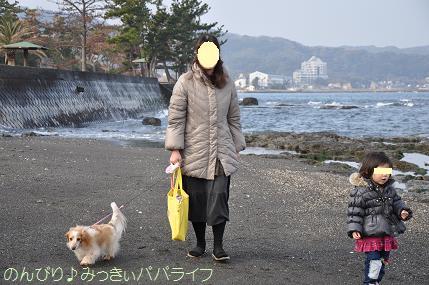 tateyama201402041.jpg
