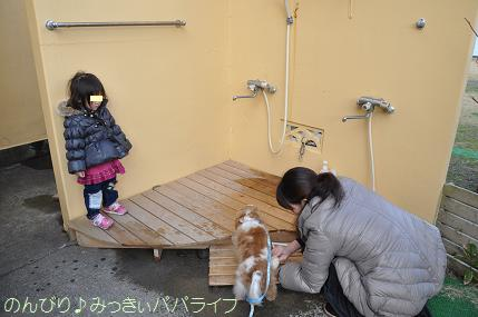 tateyama201402042.jpg