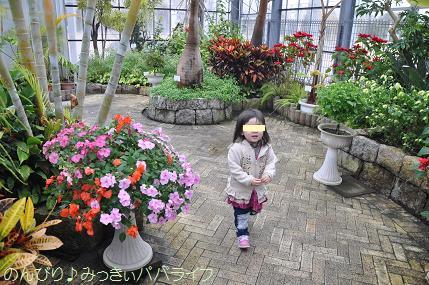 tateyama201402047.jpg