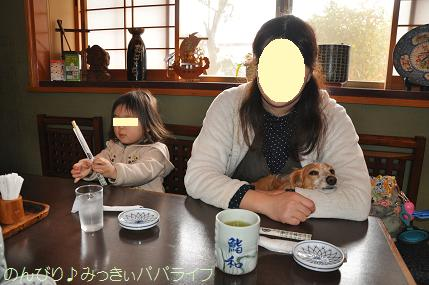 tateyama201402061.jpg