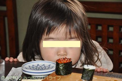 tateyama201402064.jpg
