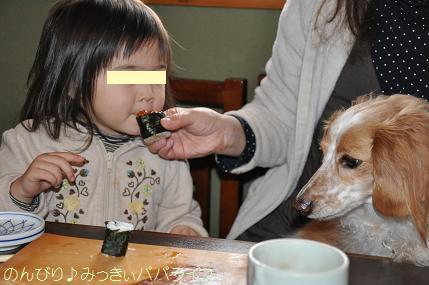 tateyama201402065.jpg
