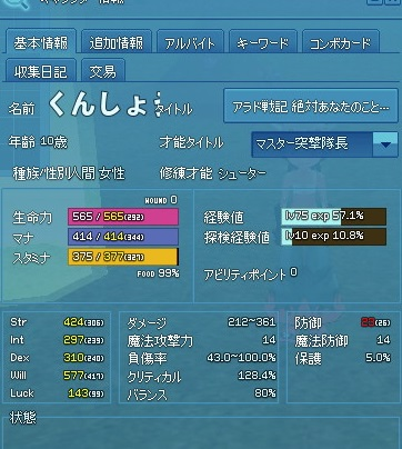 mabinogi_2013_06_13_155.jpg