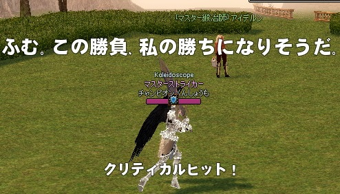 mabinogi_2013_08_27_004.jpg