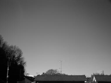 201401194.jpg
