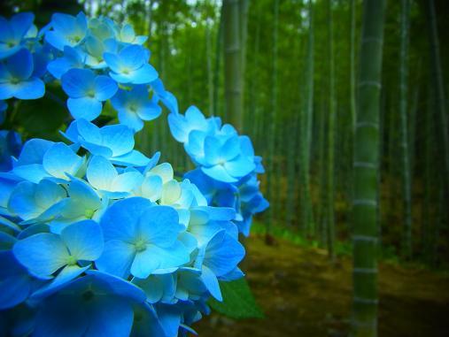 2013.7.20 今年度よーやく更新w 15