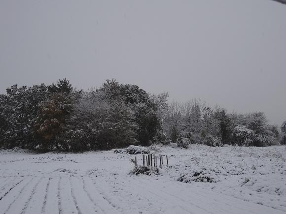 20131112-02.jpg
