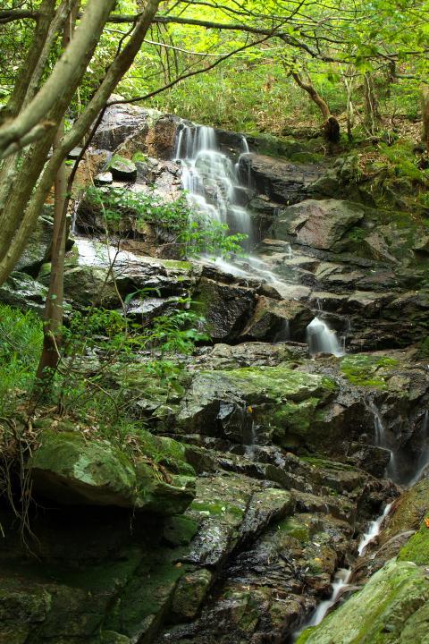 赤滝一の滝