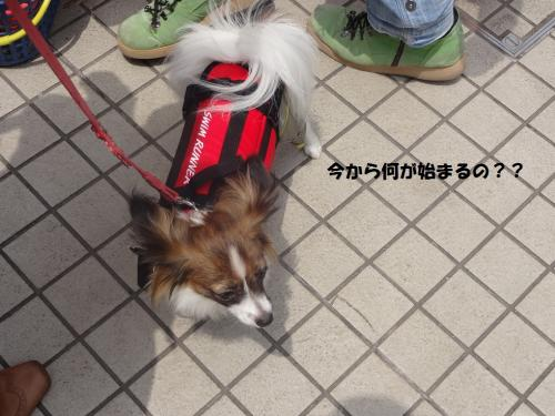 菴輔′_convert_20130526074140