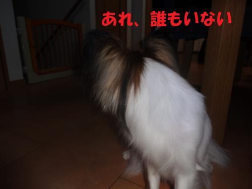 縺ゅl_convert_20130617220909