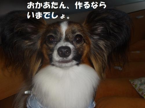 縺・∪縺ァ縺励g_convert_20130626073652