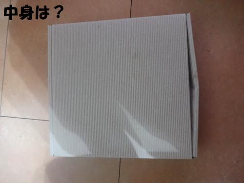 荳ュ霄ォ_convert_20130713100030