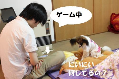 繧イ繝シ繝_convert_20130817113512
