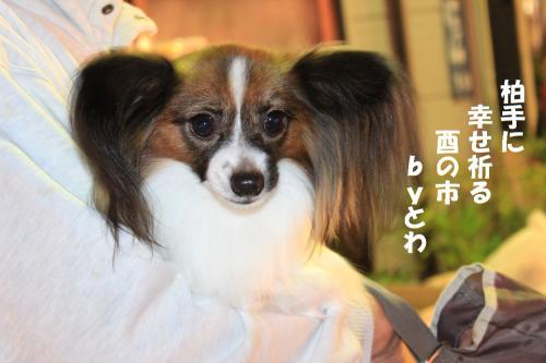 譟乗焔_convert_20131105072415