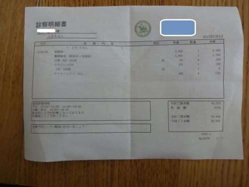 DSC01501_convert_20130505171126.jpg
