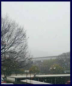 雪景色0207