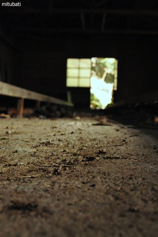 廃墟の地面
