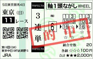 2013 武蔵野S 3連単