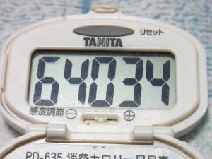 131103-241歩数計(S)