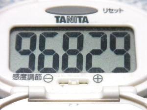 131104-251歩数計(S)