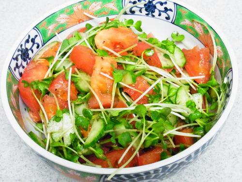 131104-231トマトときゅうりとカイワレのサラダ(S)