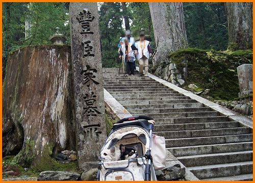 高野山00662