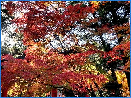 鍬山神社2032