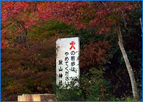 鍬山神社3654