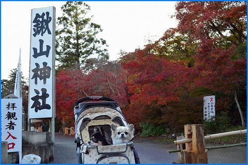 鍬山神社3653