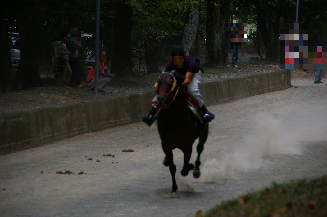 競い馬試走 須賀神社